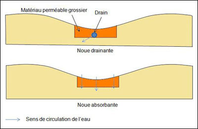 SchemaNoues