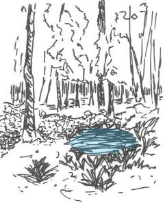 dessin-mare-foret_rvb_bis3-241x300