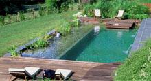piscine_nat__Bioteich
